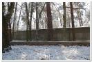 USMLM_Föhrenweg_40